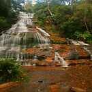 Katoomba Cascades with fern by Michael Matthews