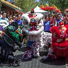 Chinese New Year Perth by Angie66