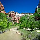 ZION by keith55g