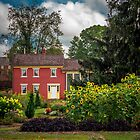Zoar Garden in the summer by Andy Donaldson