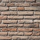 brickwall by asaphus