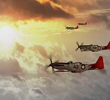Red Tails by James Biggadike