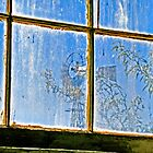 Ghost Town Window by David DeWitt