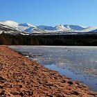 Loch Morlich Scotland by jim sloan