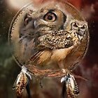 Dream Catcher - Owl Spirit by Carol  Cavalaris