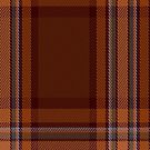 00324 Down County Tartan Fabric Print Iphone Case by Detnecs2013