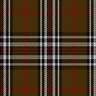 00328 Southdown Tartan Fabric Print Iphone Case by Detnecs2013