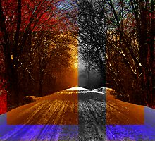Winter Trail Variation 06 by EBArt