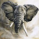 &#x27;Mr Grumpy-African bull elephant&#x27; by steve morvell