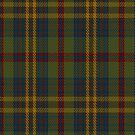 00333 Limerick County Tartan Fabric Print Iphone Case by Detnecs2013