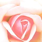 Rose by Laurynsworld