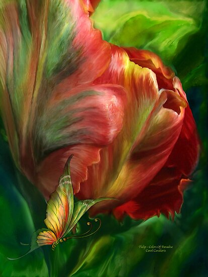Tulips - Colors Of Paradise by Carol  Cavalaris