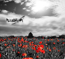 Field of Red by James Biggadike
