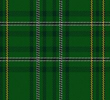 00364 Wexford County District Tartan Fabric Print Iphone Case by Detnecs2013