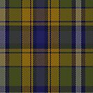 00365 Wicklow County, Crest Range District Tartan Fabric Print Iphone Case by Detnecs2013