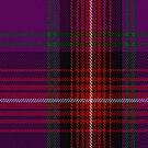 00369 Arran #2 Tartan Fabric Print Iphone Case by Detnecs2013