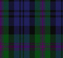 00382 Modern Baird Family Tartan Fabric Print Iphone Case by Detnecs2013