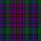 00389 Braid Tartan Fabric Print Iphone Case by Detnecs2013