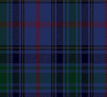 00391 Brethwe Powys Tartan Fabric Print Iphone Case by Detnecs2013