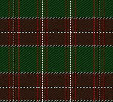 00393 Brithwe Dewi Sant Tartan Fabric Print Iphone Case by Detnecs2013