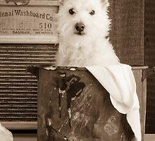 Vintage Laundry by Edward Fielding