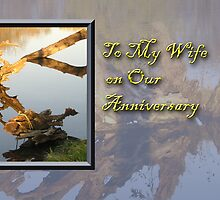 To My Wife On Our Anniversary Fish by jkartlife