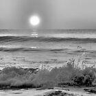 We Danced Like A Wave On The Ocean B&W by ©Dawne M. Dunton
