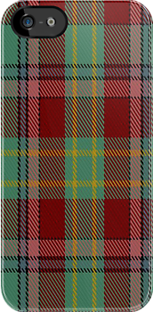 00419 Golden Broom Tartan Fabric Print Iphone Case by Detnecs2013