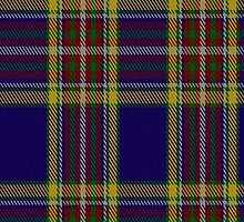 00432 Anthony Plaid Blue Tartan Fabric Print Iphone Case by Detnecs2013