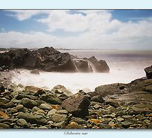 Saltwater on the rocks 01 by kevin chippindall