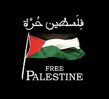 Free Palestine 2013 t shirts, stickers and cases by darweeshq