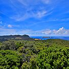 Admiralty Islets and Lord Howe Island by Peter Doré