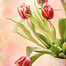 spring flourish by Teresa Pople