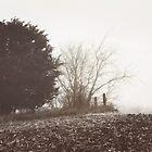Along the way II by KBritt