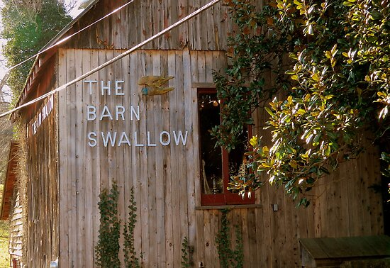 Welcome to the Barn Swallow  ^ by ctheworld