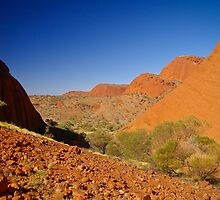 Kata Tjuta/The Olgas, Northern Territory by fotosic
