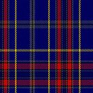 00458 Blue Bough from Orkney Tartan Fabric Print Iphone Case by Detnecs2013