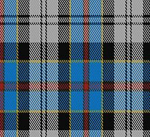 00477 Culloden Blue Stirling District Tartan Fabric Print Iphone Case by Detnecs2013