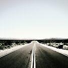 Desert Road by vivendulies