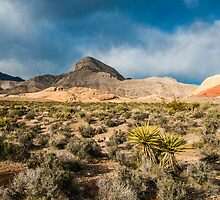 Along The Red Rock Canyon Range by Greg Summers