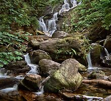 Torc Waterfall by Darren Turner