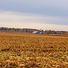 Autumn On An Indiana Farm by mcstory