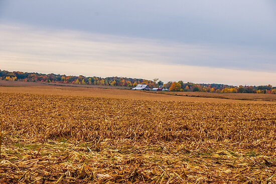 Autumn On An Indiana Farm by mcstory