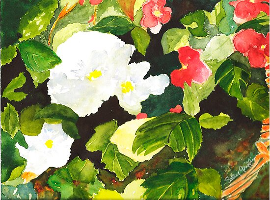 Begonia Basket by Sally Griffin