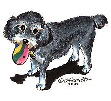 Lucy the Poodle Mix Custom Caricature by offleashart