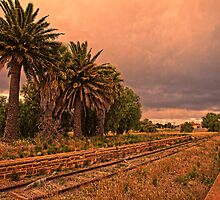 The Train Don't Run Here No More by Wendi Donaldson