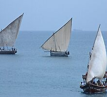 The Dhows of Zanzibar by Adrian Paul