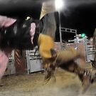 Bucked! by michaelasamples
