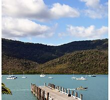 Shute Harbour  by LCR  Photography