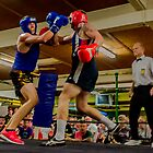 Boxing 2 by John Van-Den-Broeke